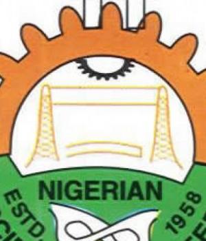 Nigerian Society for Engineers