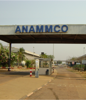ANAMMCO