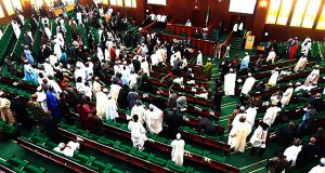 House of Reps in a rowdy session