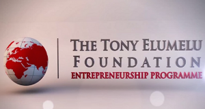 Tony-Elumelu-Foundation Entrepreneurship Programme, TEEP