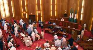 The Nigerian Senate chamber