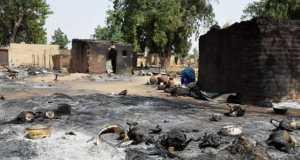 Ravaged community in Borno