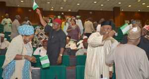 House-of-Reps-in rowdy session over fuel price hike
