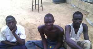 Boko Haram Terrorists arrested in Gombori