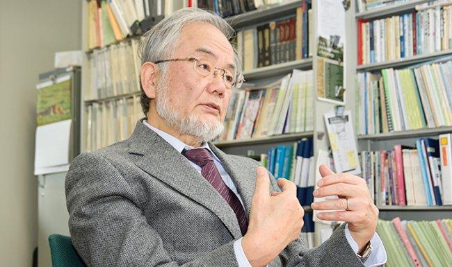 Cellular biologist Yoshinori Ohsumi wins Nobel Prize in medicine