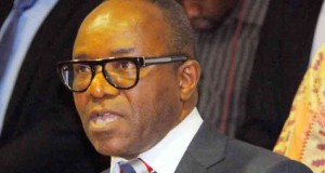 Ibe Kachikwu, Minister of State for Petroleum Resources
