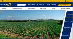 Screen Shot of new FirstBank website
