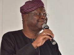 Prof. Olu Lafe, Director Centre for Renewable Technologies (CRET) FUTA