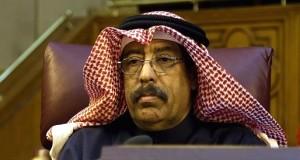 Qatari ambassador in Cairo, Seyf Bin Mukaddem Al-Bu Ayneyn