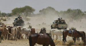 Boko-Haram terrorists invade Borno village again