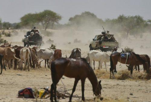 Boko-Haram terrorists invade Borno village again