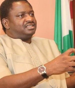Presidential Spokesperson, Femi Adesina