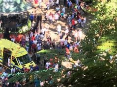 Falling tree crushes Madeira festival
