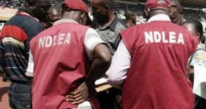 NDLEA-operatives
