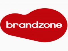 Brandzone Consulting LLC