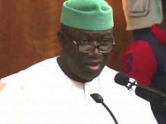 Minister of Solid Minerals, Dr Kayode Fayemi