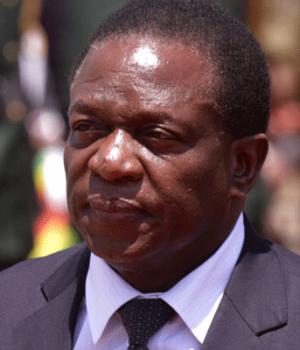 Mugabe's deputy Emmerson Mnangagwa