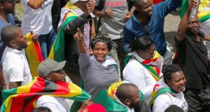 Anti-Mugabe protesters