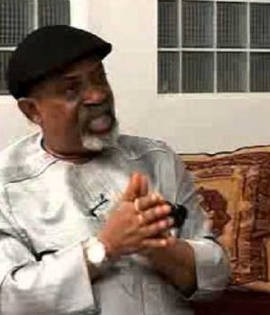 Dr. Chris Ngige, Minister of Labour and Productivity