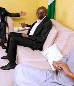 Buhari Diaspora Support Organization with President Buhari