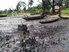 Ogoniland cleanup