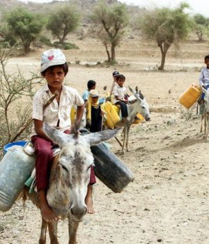 Displaced Yemeni children