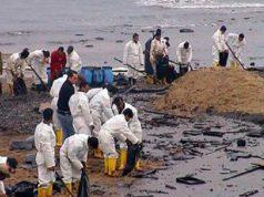 Ogoni-Cleanup
