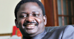 Femi Adesina, Presidential spokesperson