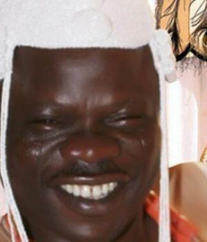Oba Muftau Gbadamosi Oloyede, Olofa of Offa