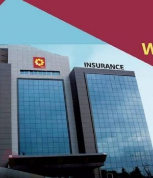 NEM-Insurance Plc