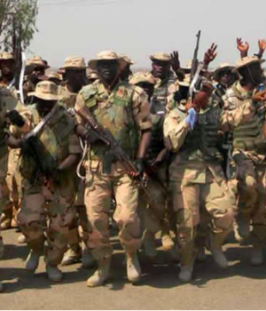 Soldiers on Operation Python Dance