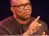 Peter Obi, PDP