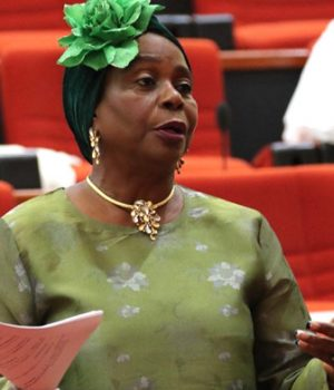 Senator Biodun Olujimi