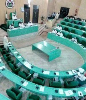 Kano Assembly