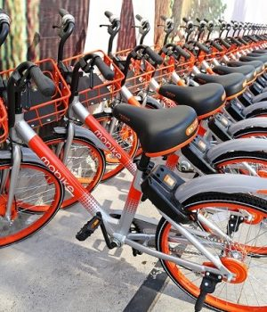 Chinese bicycles
