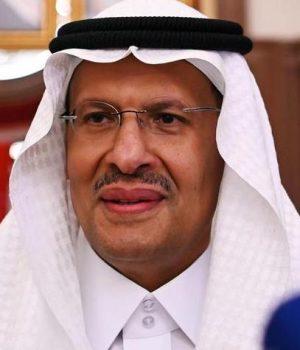 Abdulaziz bin Salman, Saudi Energy Minister