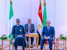 President Buhari and Abdelfattah el-Sisi