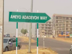 Stella Ameyo Adedevoh