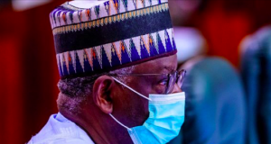 Prof. Ibrahim Gambari, Buhari's CoS