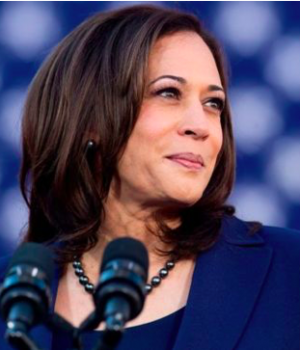 Sen. Kamala Harris, Joe Biden's running mate
