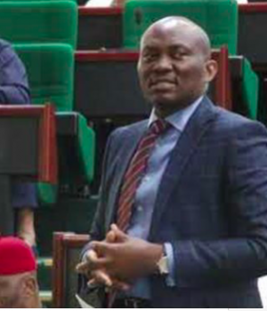 Ndudi Elumelu, House of Reps minority leader