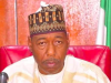 Governor of Borno State, Prof. Babagana Zulum