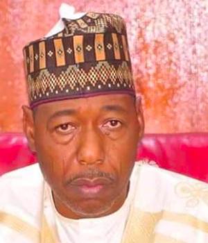 Governor of Borno State, Prof. Babagana Zulum