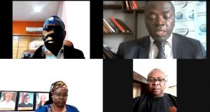 Participants at the WES virtual summit