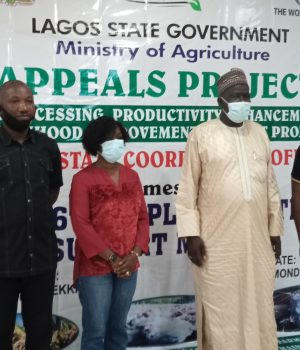 Lagos Agro-Processing, Productivity Enhancement and Livelihood Improvement Support