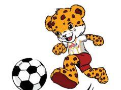 Edo 2021 sports festivals
