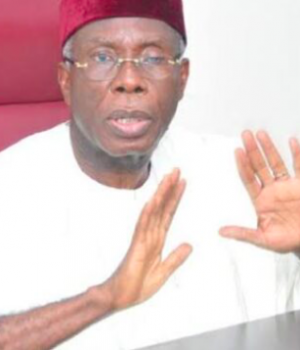 Audu Ogbe, ACF Chair